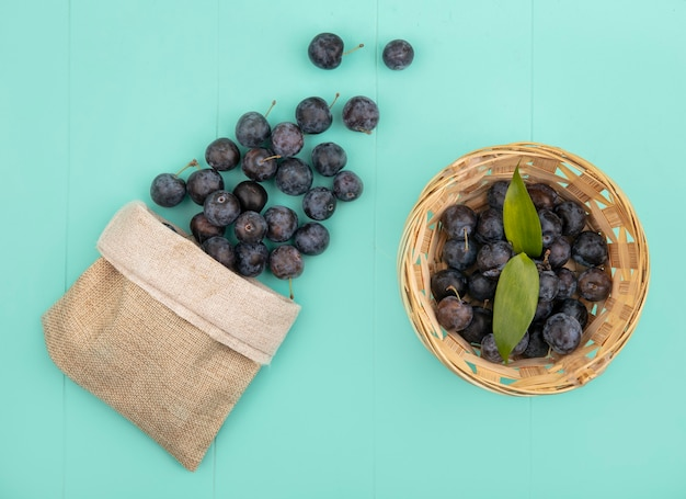 Bovenaanzicht van de kleine donkere bolvormige samentrekkende fruit sleepruimen op een emmer met sleepruimen die uit een jutezak vallen op een blauwe achtergrond Gratis Foto