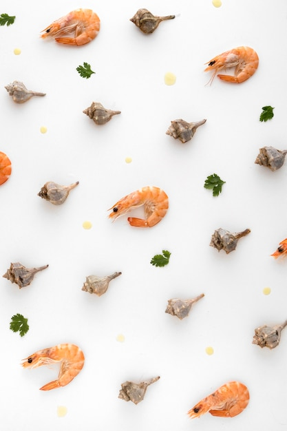 Bovenaanzicht van garnalen met andere schelpen Gratis Foto
