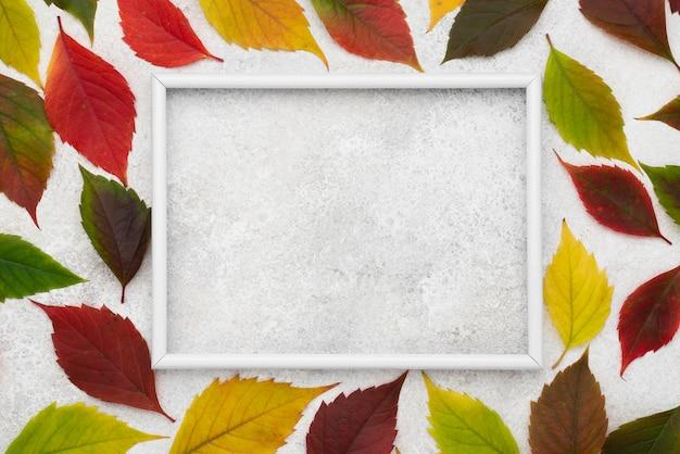 Bovenaanzicht van gekleurde bladeren met kopie ruimte en frame Premium Foto