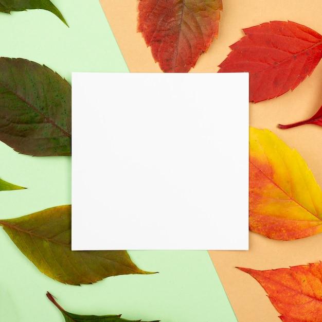 Bovenaanzicht van gekleurde bladeren met vierkant papier Premium Foto