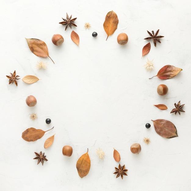 Bovenaanzicht van herfstbladeren met steranijs en kastanjes Gratis Foto