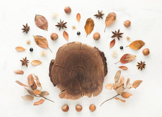 Bovenaanzicht van hout met herfstbladeren Gratis Foto