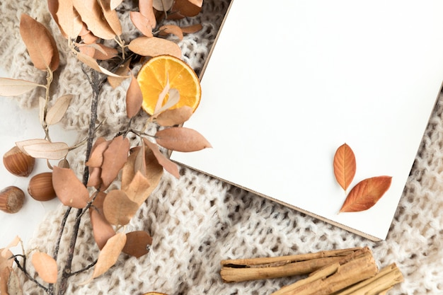 Bovenaanzicht van lege bordje met herfstbladeren en kaneelstokjes Gratis Foto