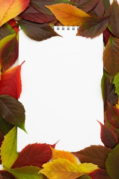Bovenaanzicht van notebook met herfstbladeren frame Gratis Foto