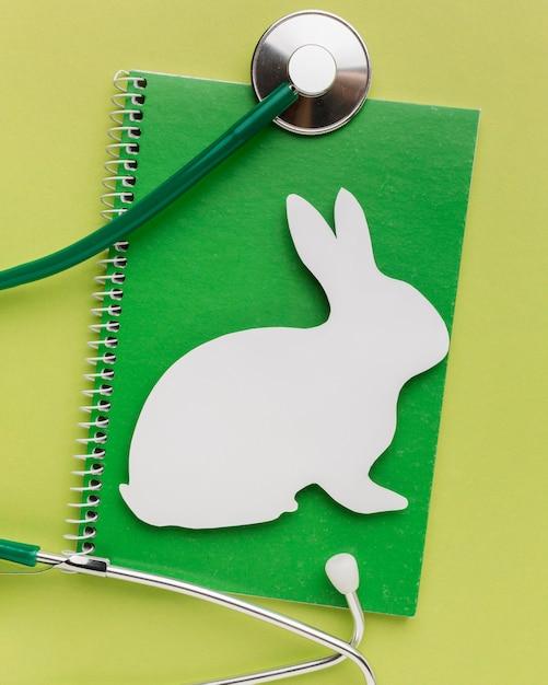 Bovenaanzicht van notitieboekje met papieren konijn en stethoscoop voor dierendag Gratis Foto