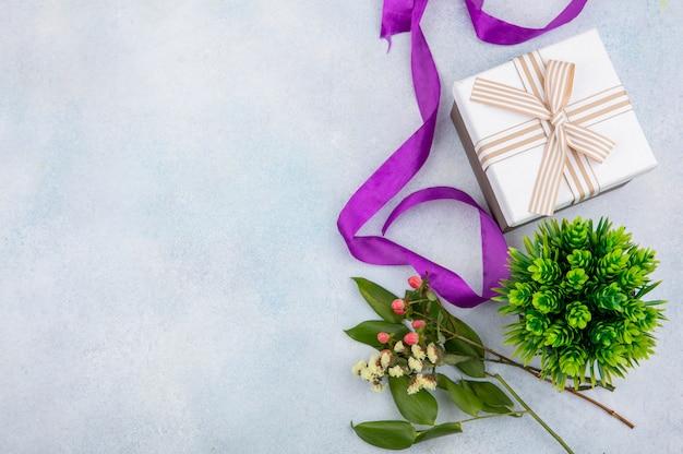 Bovenaanzicht van roze hypericum bessen met geschenkdoos op witte ondergrond Gratis Foto