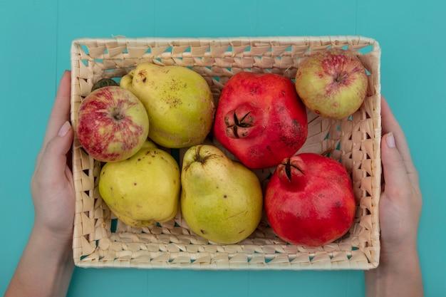 Bovenaanzicht van vrouwelijke handen met een emmer met vers fruit zoals appels, granaatappels en kweeperen op een blauwe achtergrond Gratis Foto