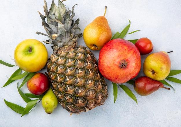Bovenaanzicht van vruchten op witte ondergrond versierd met bladeren Gratis Foto
