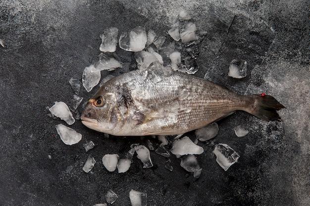 Bovenaanzicht vis op ijs Gratis Foto