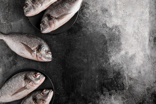 Bovenaanzicht vis op kopie ruimte achtergrond Gratis Foto