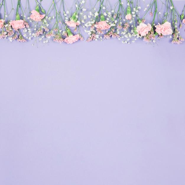 Bovenrand versierd met limonium; gypsophila en anjers bloemen op paarse achtergrond Gratis Foto