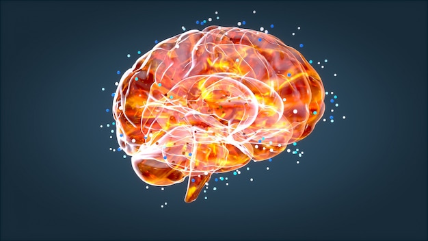 Brain xray, menselijke anatomie, 3d-geïllustreerde neuronen Premium Foto