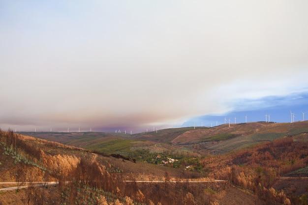 Brand in bergen in portugal Premium Foto