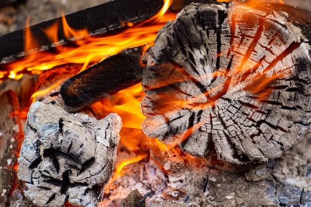 Brandende houtskool op een barbecue, sintels in het vuur, sintels, vuur, kampvuur, sintels achtergrond Premium Foto