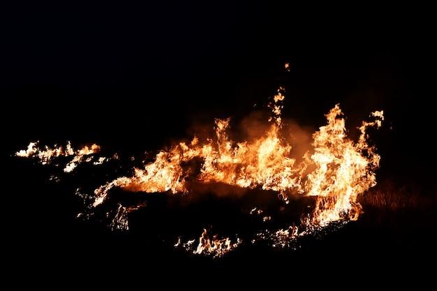 Brandvlam in duisternis voor abstracte achtergrond Premium Foto