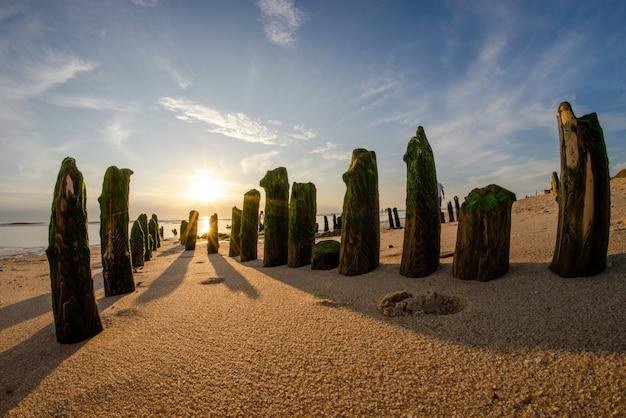 Breed fisheye schot van verticale stenen bedekt met groene mos op een zandstrand op een zonnige dag Gratis Foto