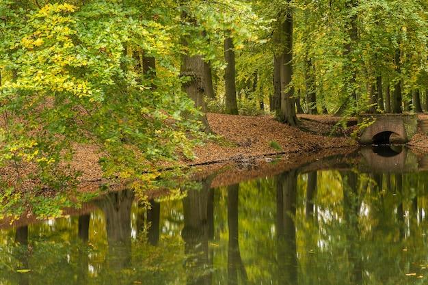 Breed shot van een meer in een park vol bomen en een stenen brug op een bewolkte dag Gratis Foto