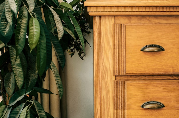 Bruine kast met groen het close-up van het achtergrond huisinstallatie binnenland van het textuurhuis Premium Foto