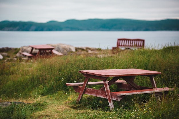 Bruine picknicktafel op groen gras Gratis Foto