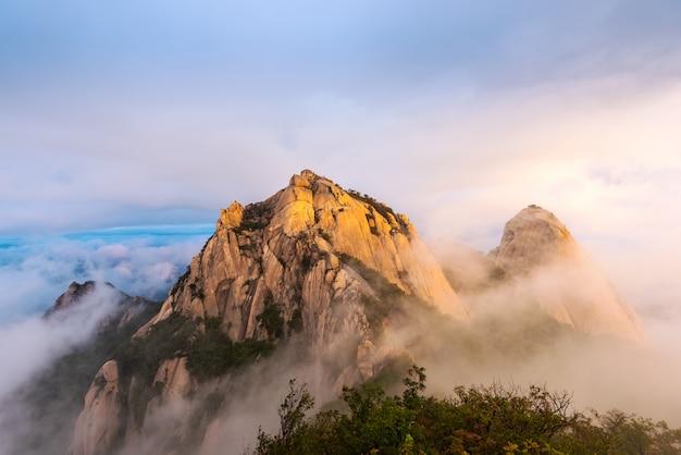 Bukhansan national park in de stad seoul Premium Foto
