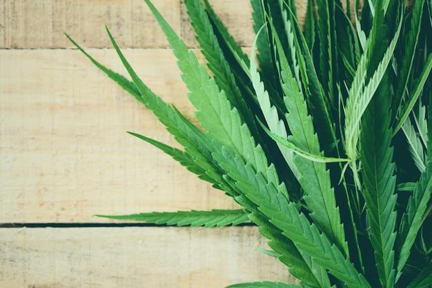 Cannabis verlaat marihuanaplant op houten hennepblad voor natuurlijke extract medische zorg Premium Foto
