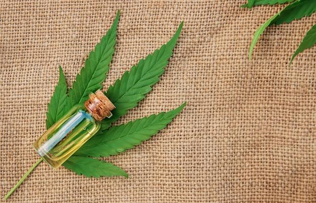 Cannabiskruid en bladeren voor behandeling Premium Foto