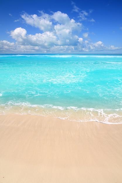 Caraïbische turkooise strand perfecte overzeese zonnige dag Premium Foto