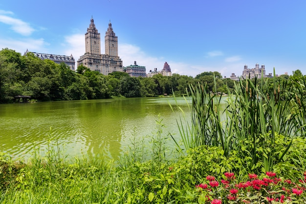 Central park the lake manhattan new york Premium Foto