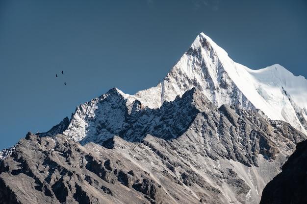 Chana dorje rotsachtige bergpiek met vogels die in blauwe hemel vliegen Premium Foto