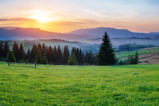 Charmante zomer zonsondergang Premium Foto