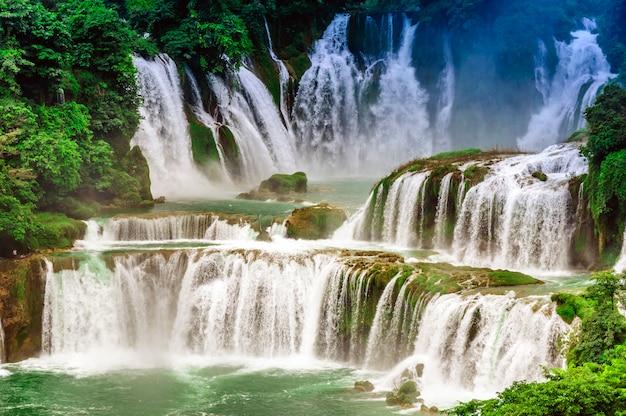 China natuurlijk jungle park vietnam zomer Gratis Foto