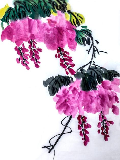Chinese frame witte element plantkunde bloem Gratis Foto