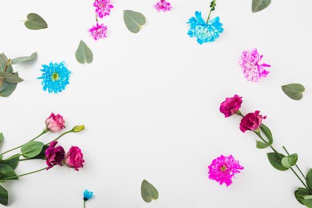 Cirkelkader met bloemen op witte achtergrond wordt gemaakt die Gratis Foto