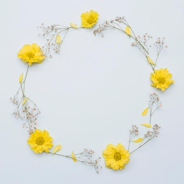 Cirkelkader met gele die bloemen wordt op witte achtergrond worden geïsoleerd gemaakt die Gratis Foto