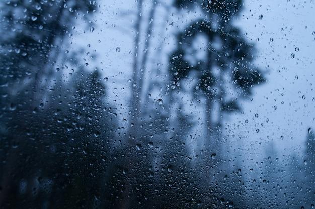 Close-up die van een nat glas is ontsproten dat op het regenachtige boslandschap wijst Gratis Foto