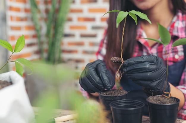Close-up foto van gardener's hands planting plant Gratis Foto