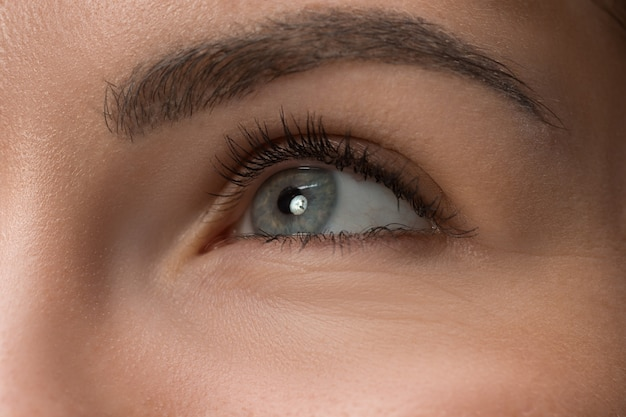 Close-up grijze ogen op het gezicht van jonge mooie blanke meisje Gratis Foto