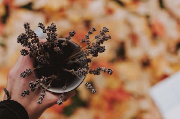 Close-up hoge hoek shot van een hand met een vaas vol met droge planten boven het blad bedekt grond Gratis Foto