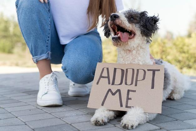 Close-up meisje met adoptiehond Premium Foto