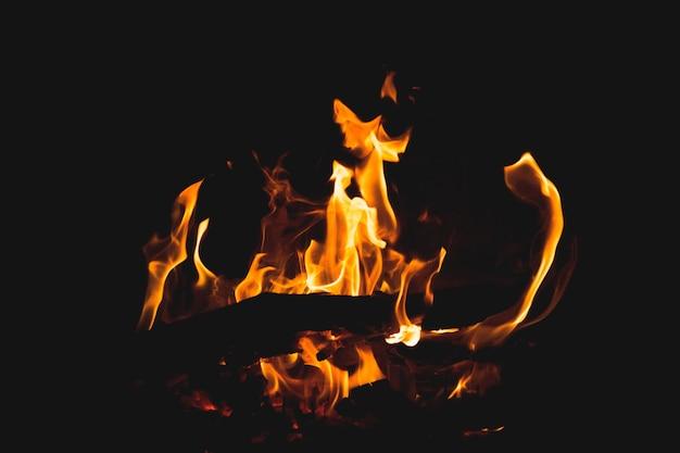 Close-up shot brandend hout en de prachtige kleuren van vuur Gratis Foto