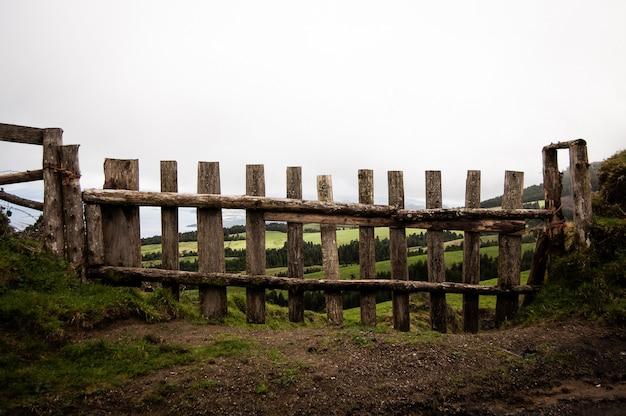 Close-up shot van een houten hek met grasveld en bomen op de achtergrond Gratis Foto