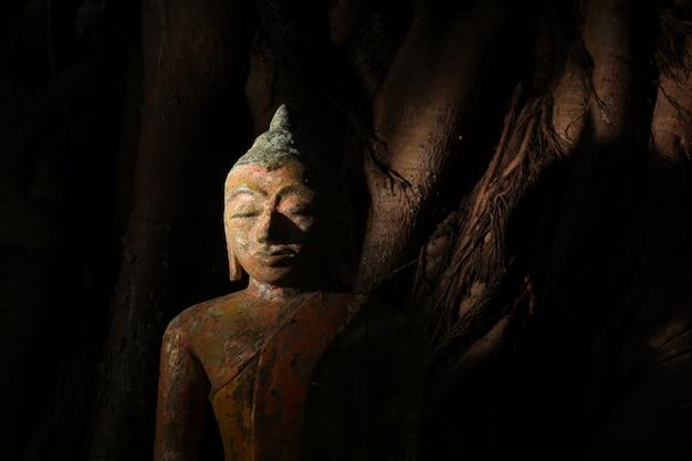 Close-up shot van een standbeeld van klei religieuze boeddha in een griezelig mysterieuze plaats. Gratis Foto