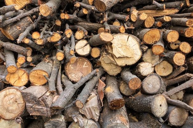 Close-up shot van gedroogde boomstammen prachtig geordend in een stapel, voorbereid voor verder gebruik Gratis Foto