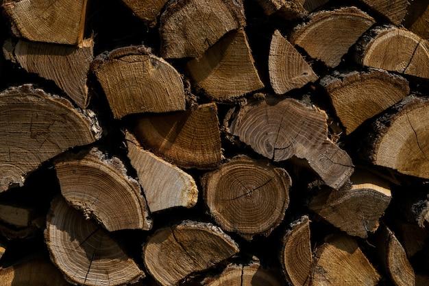 Close-up shot van gesneden boom planten bovenop elkaar - ideaal voor achtergrond Gratis Foto