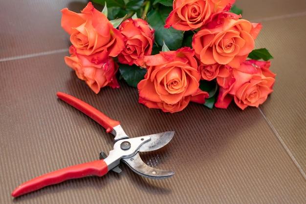 Close-up snoeischaar met elegante rode rozen Gratis Foto