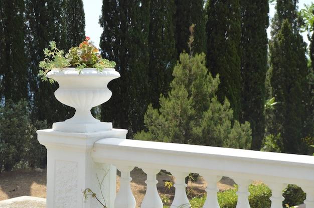 Close-up van balustrade met bloempot in park op bomenachtergrond Premium Foto