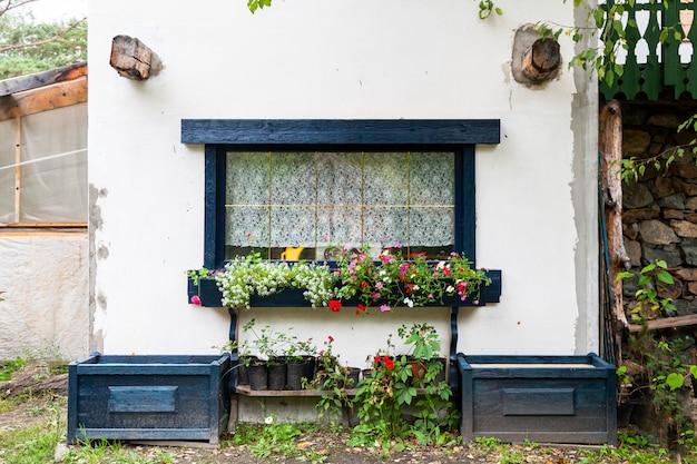 Close-up van een charmant venster van een wit oud huis met zwarte houten luiken en versierd met potten met groene planten en bloemen Premium Foto