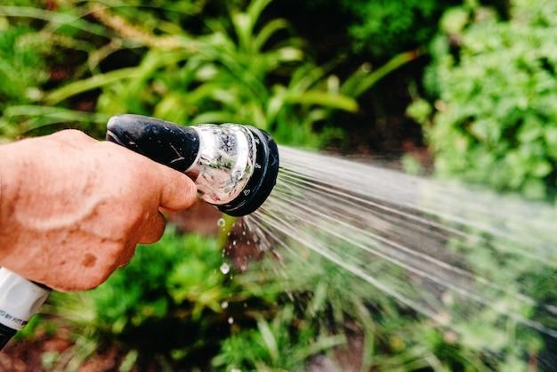 Close-up van een man die zijn tuin water geeft met een slang die water spuit Premium Foto