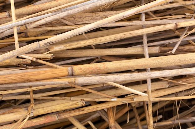 Close-up van een stapel droge rietstelen Premium Foto