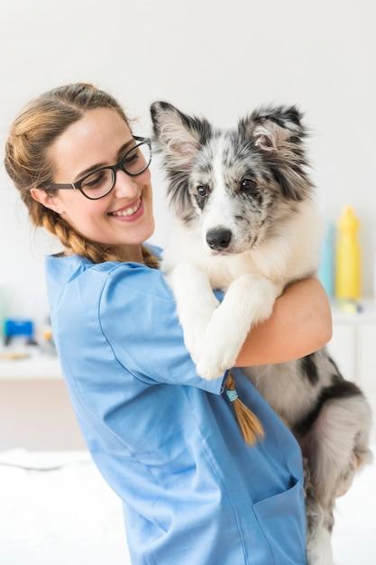 Close-up van glimlachende jonge vrouwelijke dierenarts die de hond in kliniek vervoeren Premium Foto